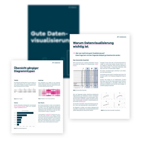 Whitepaper-Datenvisualisierung